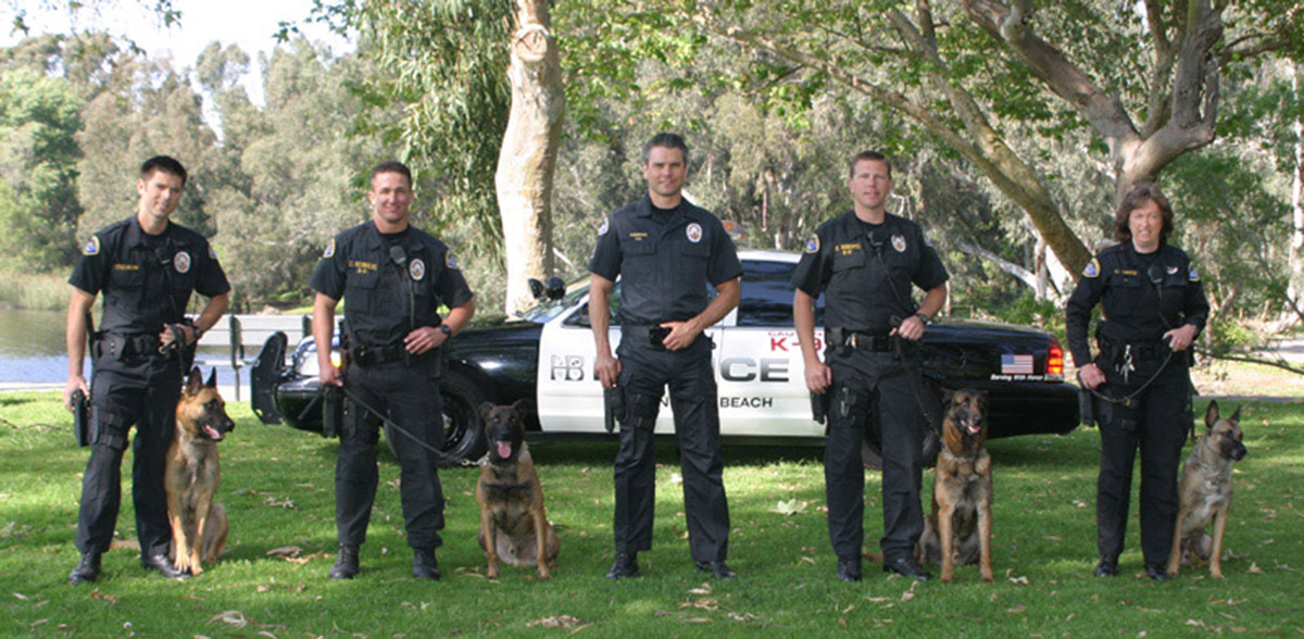 an introduction to the importance of canines of the police force police dogs K-9 police officer career public demonstrations are an important part of the there are many organizations dedicated to canine police dogs including the u.