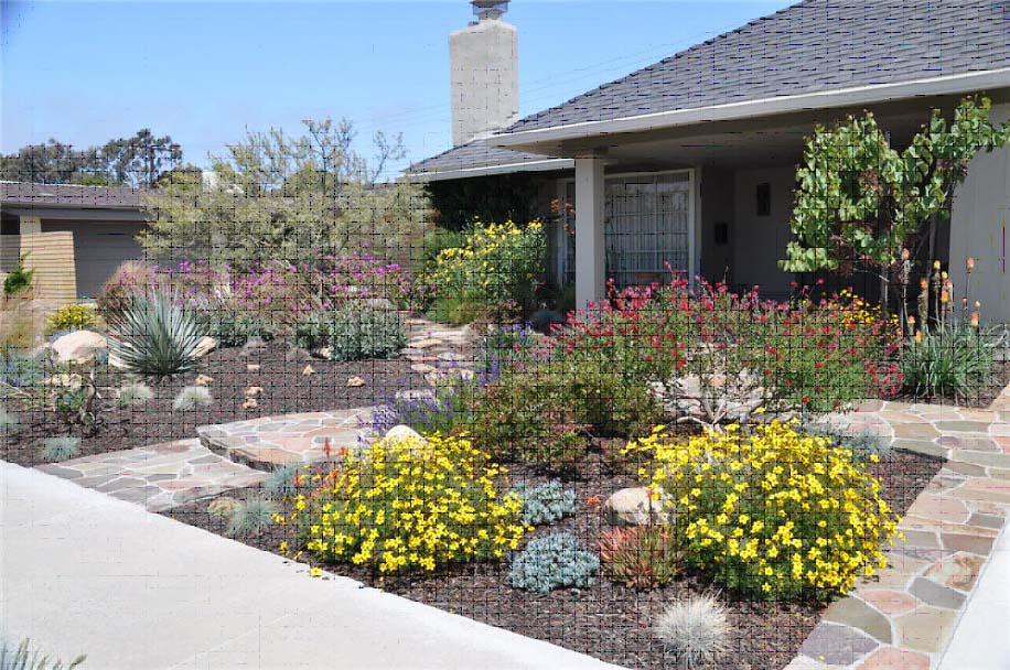 drought tolerant landscaping city of huntington ca news free residential 13158