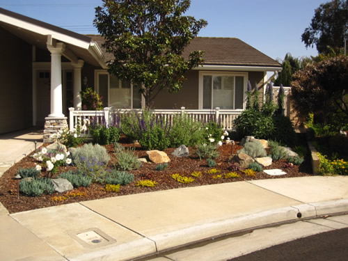 Huntington Beach home with a beautiful low water use yard.
